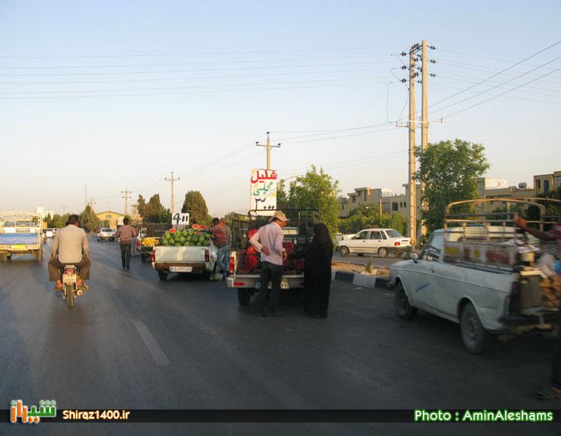 بالاخره شهرداری شیراز پذیرفت!  آغاز برخورد با بارفروشان سیار از ۱۰ مرداد در شیراز