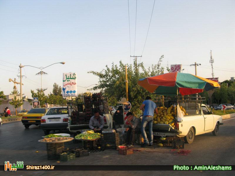 بیکاری و دست فروشی مزد ۳۰ سال تامین گندم کشور و حضور فارس در قلههای علمی – فرهنگی کشور