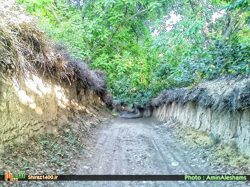 مقایسه روند تخریب باغهای شیراز بین سالهای ۲۰۰۳ تا ۲۰۱۳