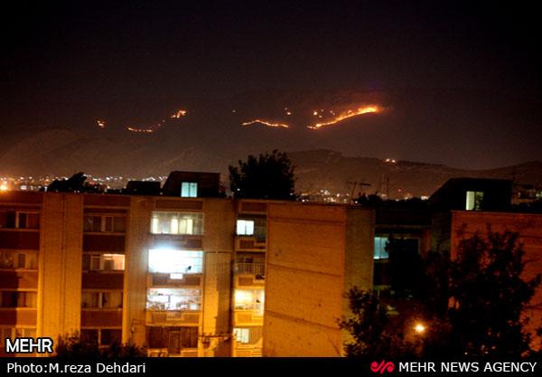 خسارت ۳۰ میلیاردی آتش سوزی در «بمو» / ۲۲۰ هزاربوته و ۲ هزار درختچه سوختند
