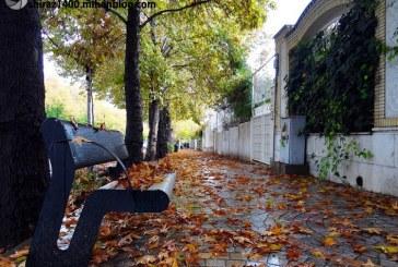 با افزایش ۲۳۸درصدی بارشها، شیراز رکورددار بارشهای پاییزی در بین کلانشهرها
