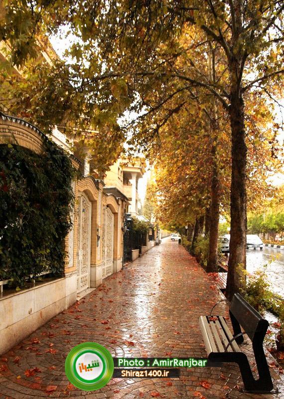 های شهر شیراز ۵ تصویر منتخب از طبیعت پاییزی بلوار ارم – شیراز ۱۴۰۰ ...