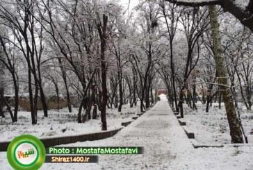 بارندگیهای زمستان در فارس مطلوب است