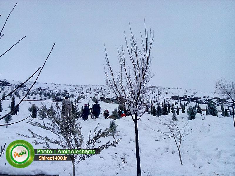 پارک کوهستانی آبشار شهرک گلستان شیراز
