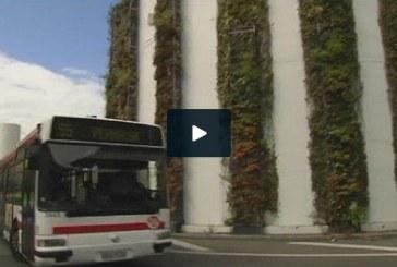 ستونهای سبز گیاهی عاملی برای پاکسازی هوای آلوده