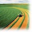 اولویت اول در فارس، ایجاد کشاورزی صنعتی است