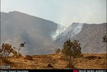 آتش سوزی سه هزار هکتار از جنگلهای فارس در سال ۹۲/ سهل انگاری مردم علت حریق
