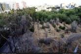 تشکیل زنجیره انسانی برای نجات باغ فرزانه