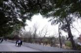 سهم شهرداری در باغ فرزانه به پارک تبدیل میشود