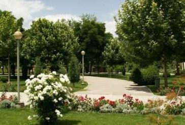 افزایش سرانه فضای سبز شیراز