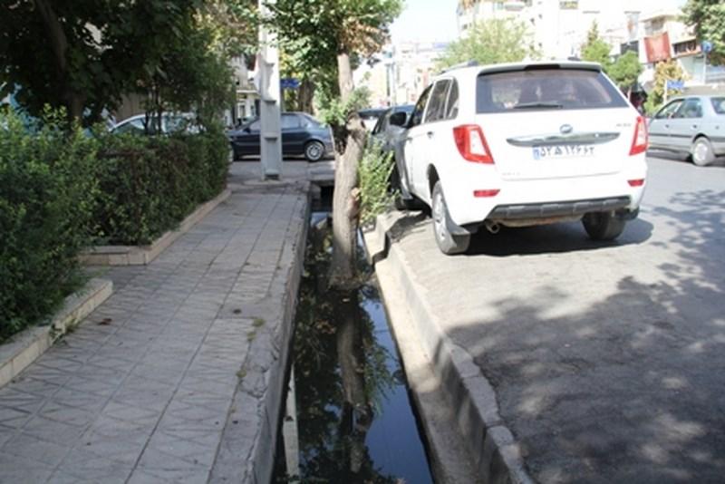 خیابان عفیف آباد