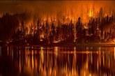 آتش بی پولی طبیعت فارس را می سوزاند/ اطفای حریق با دستهای خالی