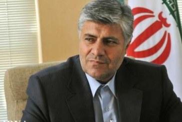 شهردار شیراز: خانه کشتی شهرداری را راه اندازی می کنیم