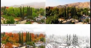 چهارفصل شیراز در یک قاب