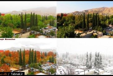 ویدئو : شیراز، شهری چهارفصل