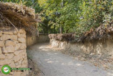 گزارش تصویری : گشتی در کوچه باغهای چمران