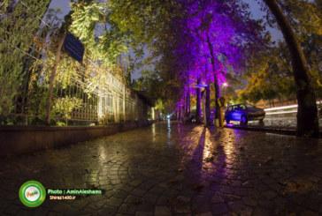 گزارش تصویری : غروب بارانی بلوار ارم در پاییز دل انگیز شیراز