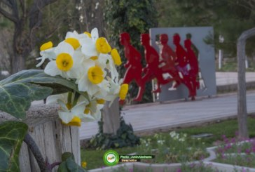 گزارش تصویری : باغ جنت و نرگس شیراز