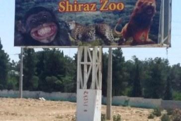 باغ وحش شیراز، سیاهچاله حیوانات!+تصاویر