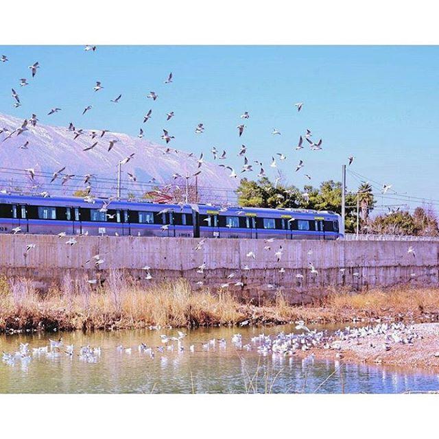 بخشی از خط یک مترو شیراز بصورت همسطح از کنار رودخانه خشک می گذرد