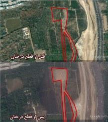 جناب شهردار با ماهواره گوگل تخریب باغهای شیراز را ببینید!