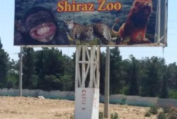 باغ وحش شیراز جانی دوباره میگیرد