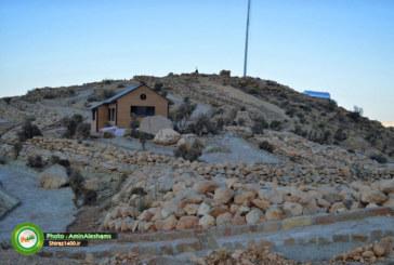 ۳۶۰۰ هکتار از ارتفاعات شیراز سبز شد