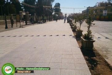 تاخت و تازخودروها در پیاده روهای شیراز