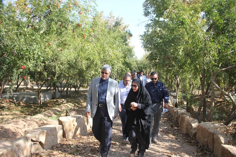 حفظ باغات شیراز مهمترین اولویت شهرداری شیراز است
