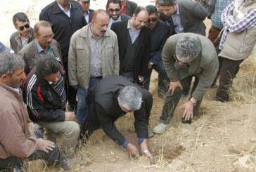 ایجاد ۲۰ کیلومتر کوهراه در ارتفاعات شیراز