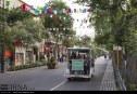 گزارش تصویری : اولین جشنواره زندگی پیاده در شهر