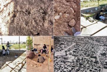 کشف اسکلت های دوران ساسانیان در شیراز