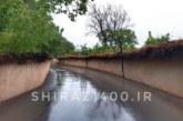 گزارش تصویری: باران بهاری امروز شیراز