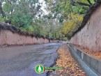 چراغ سبز برای تخریب دسته یک تا ۳ باغهای شیراز؟