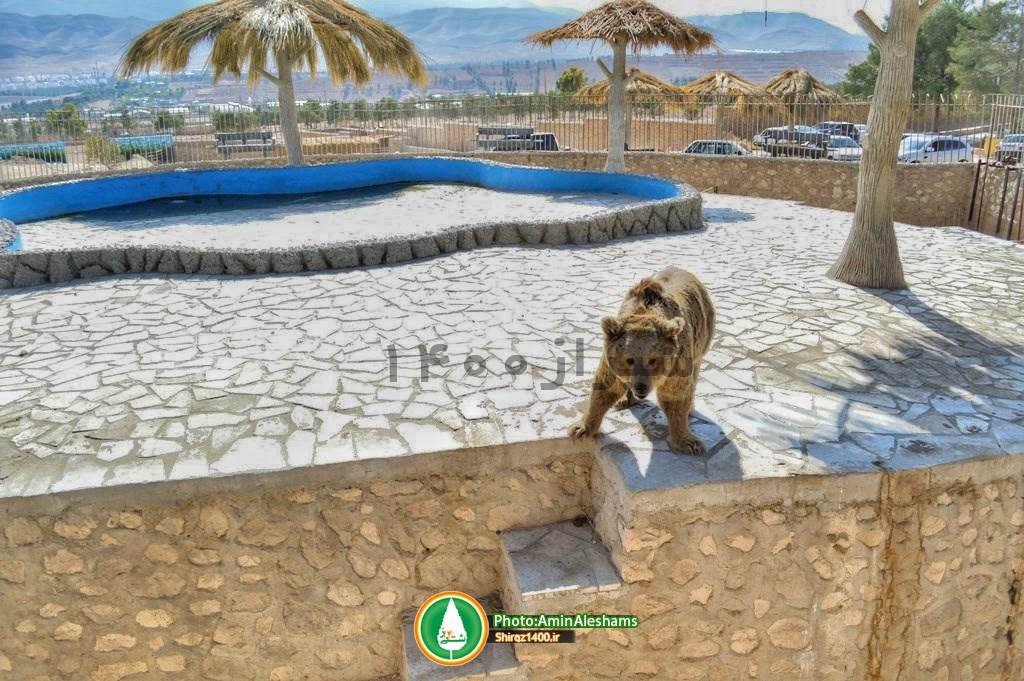 گزارشی از باغ وحش شیراز + تصاویر