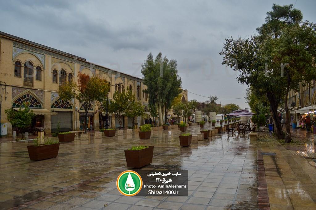گزارش تصویری : طراوات باران پاییزی شیراز