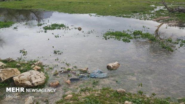 بارندگیهای فارس ۳۱۴ درصد افزایش یافت
