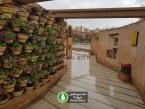 گزارش تصویری : کوچه گلها در بوستان کودک