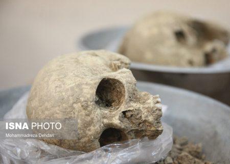 عکس: کشف اولین اسکلت ها در تخت جمشید