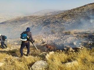 مهار آتش در ارتفاعات شاپورجان و سیخ دارنگون شیراز