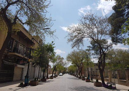 مروری بر برخی از پروژه های سنگ فرش معابر شیراز