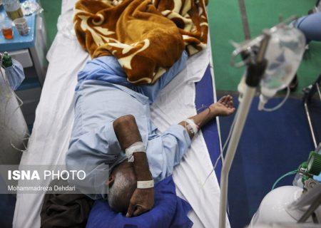 فوت ۱۷ نفر دیگر بر اثر کرونا در فارس